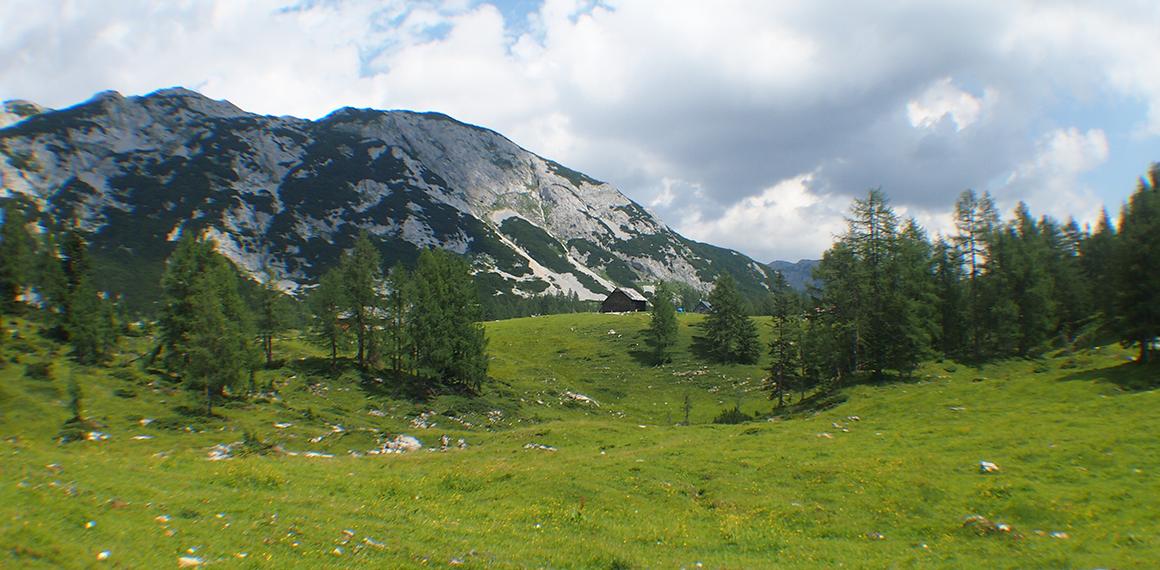 Panorama beim Wandern in der Region Tauplitz.