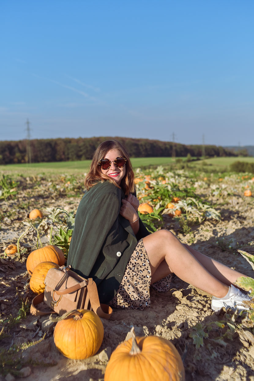 10 Gründe den Herbst zu lieben inkl. Herbstoutfit mit Leo Print 9