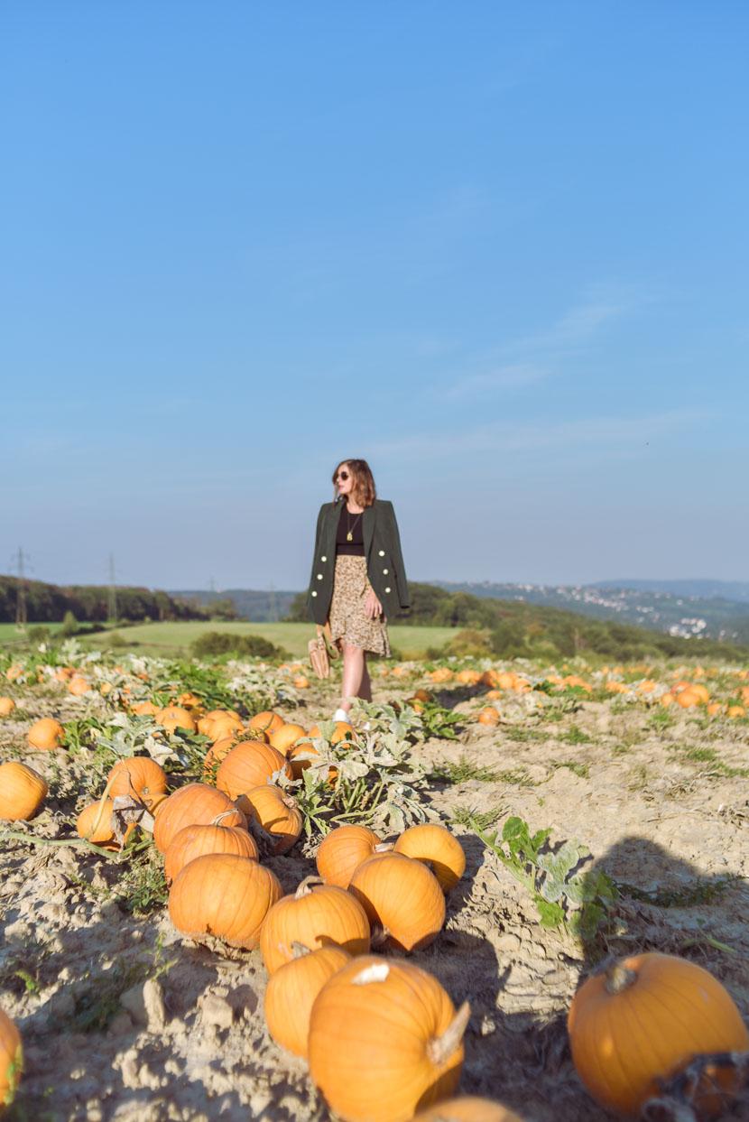 10 Gründe den Herbst zu lieben inkl. Herbstoutfit mit Leo Print 6