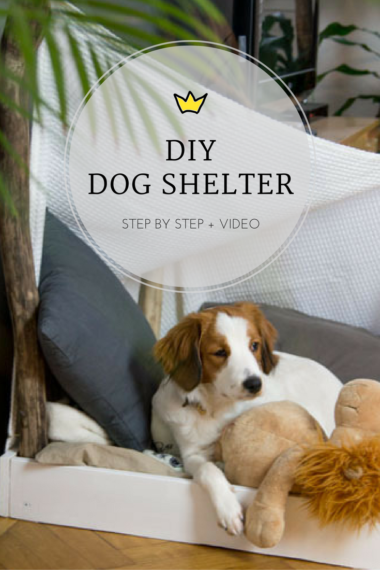 diy-dog-shelter