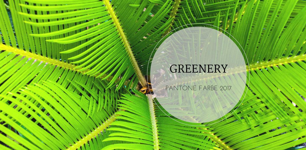 Greenery: Die neue Trendfarbe für Mode und Interior? #greenery #pantone #trend# howtostyle #interior #fashion #mode #styling #kombinieren #tipps #grün #kermit #amigaprincess #mode #2017