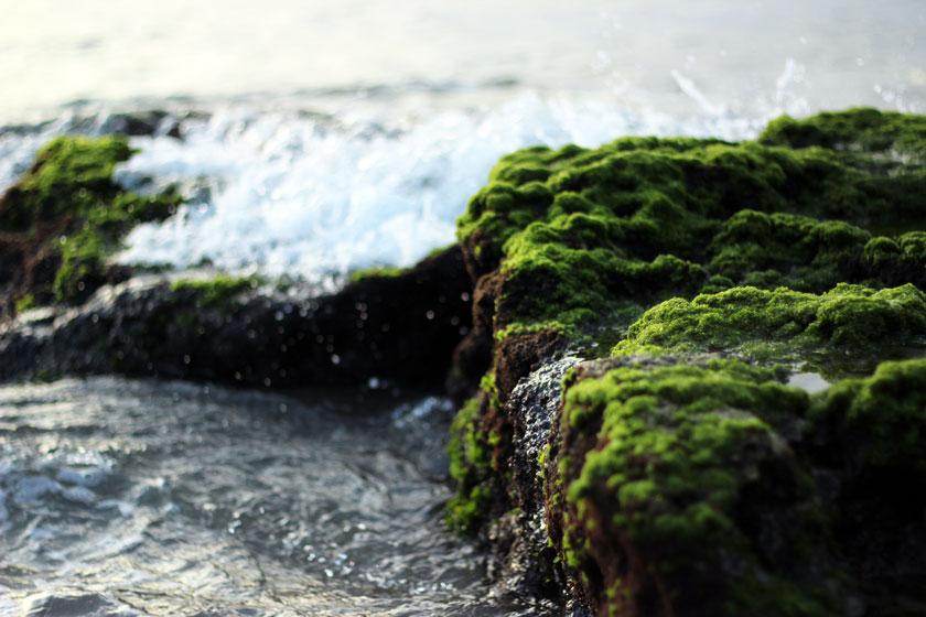 5 Tipps für einen umweltfreundlichen Haushalt* 2