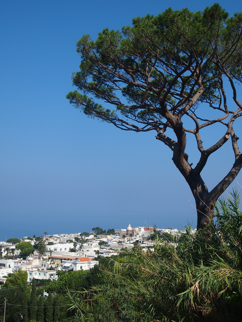 Capri - Must Do´s auf der Zauberinsel 20
