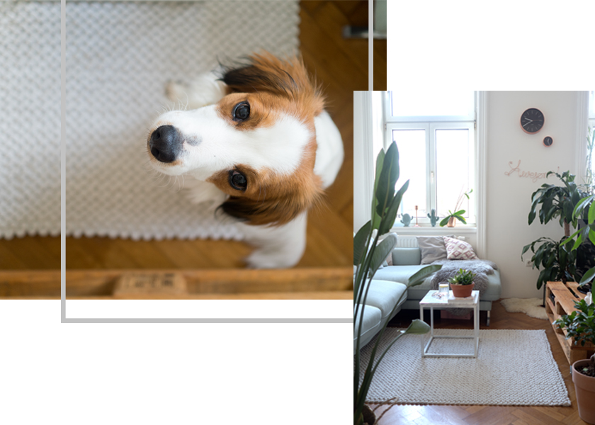 Wohnzimmer Update* - Hello mint & marble 15