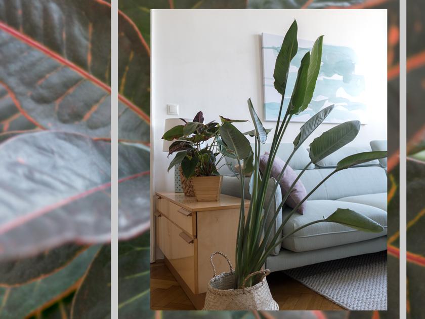 Wohnzimmer Update* - Hello mint & marble 4