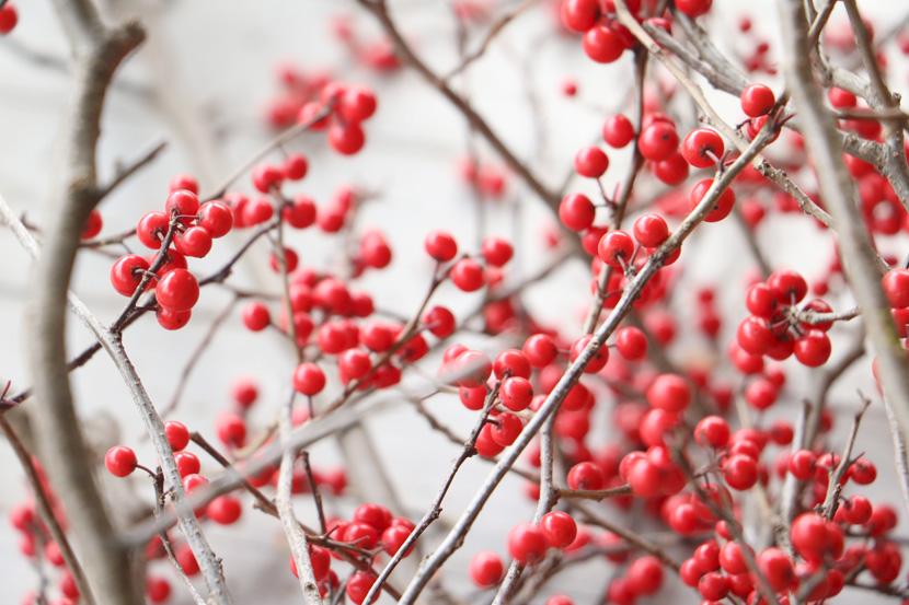 Skandinavischer Weihnachtsschmuck - Tipps und Tricks 2