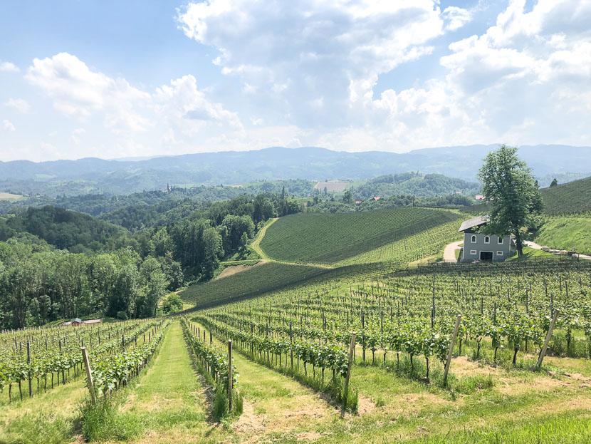 Die Südsteirische Weinstraße - meine Tipps 24