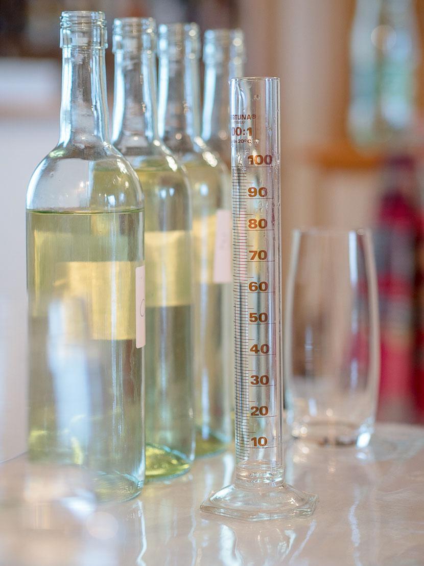 La Amistad - so kam es zu meinem eigenen Wein 5