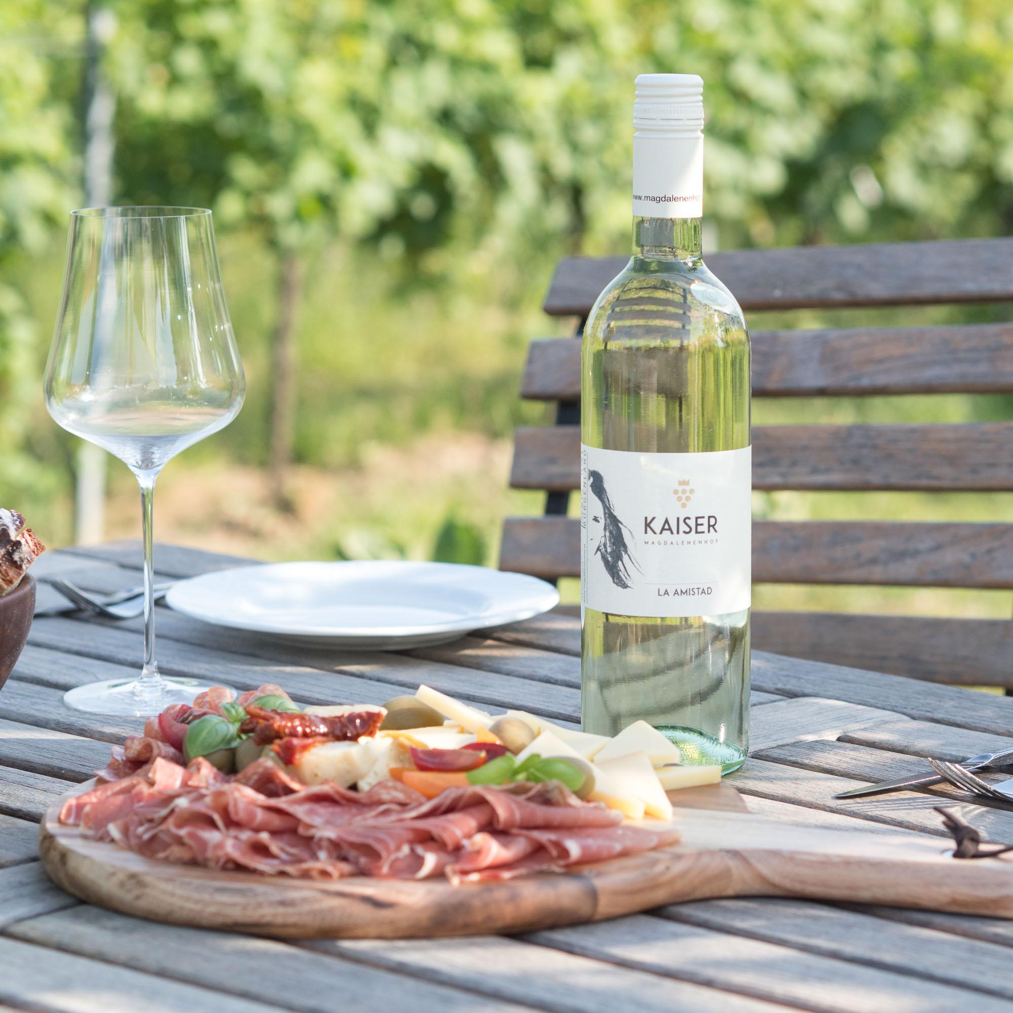 La Amistad - so kam es zu meinem eigenen Wein 11