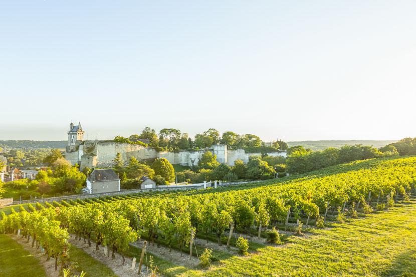 Urlaub in der Weinregion - das Loire Tal* 1