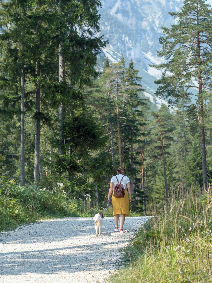 Ausflugstipp in Österreich: Der Grüne See 8