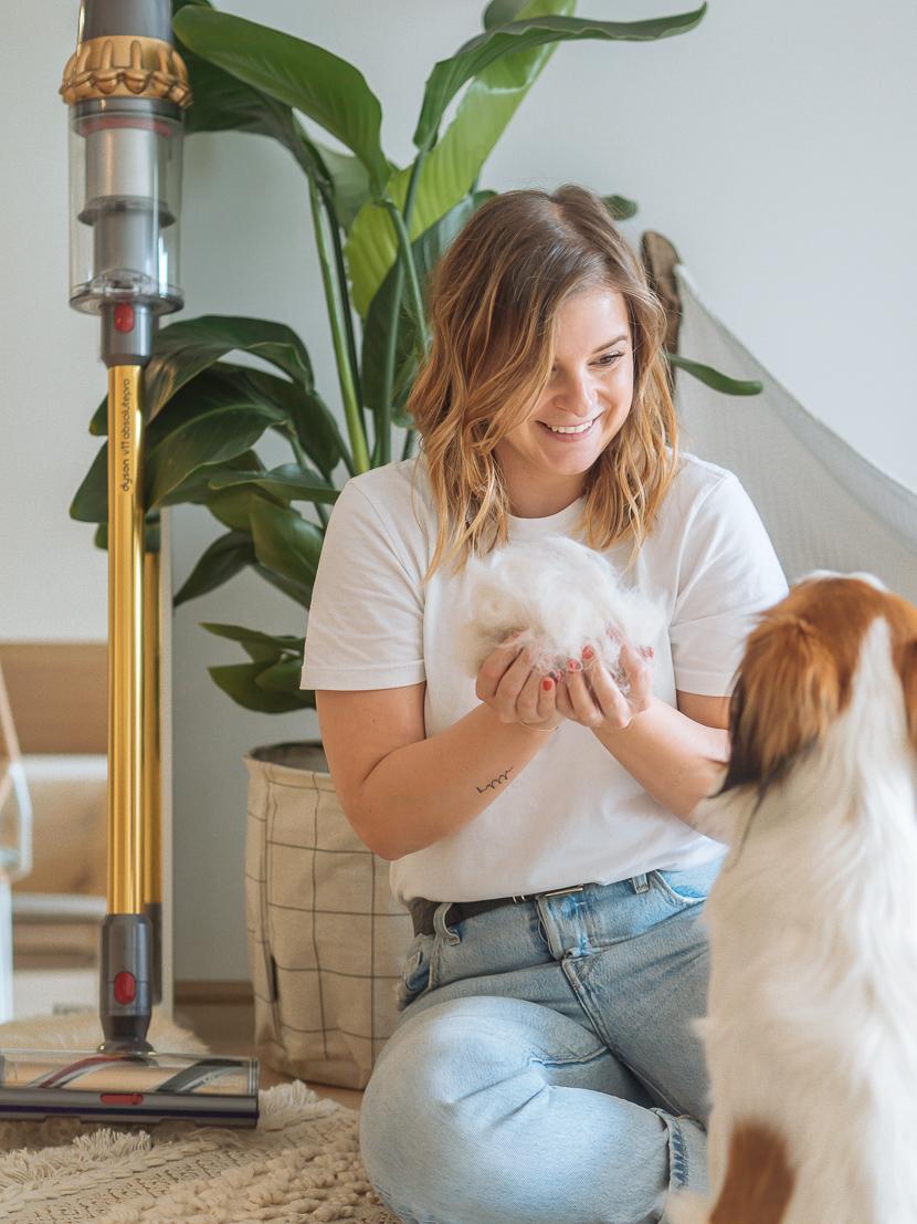 5 Tipps Für Einen Sauberen Haushalt Mit Hund Happy Lifestyle Blog