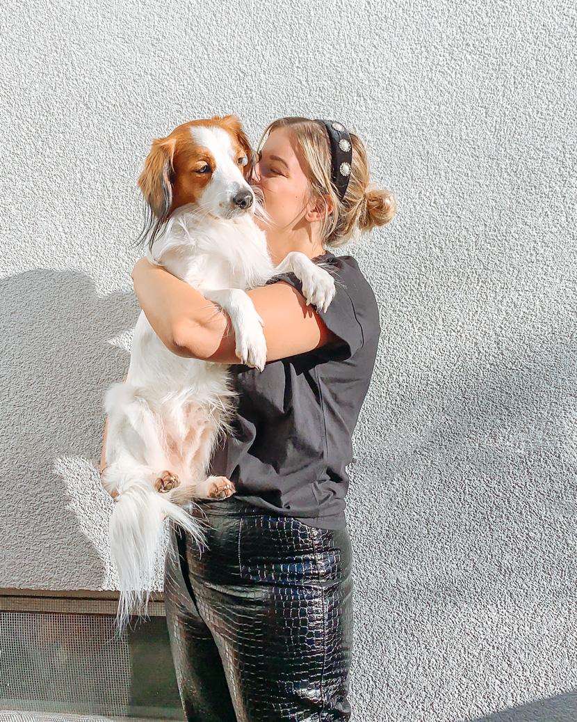 Haustierhelden - Österreichische Comedy-Stars verleihen Knut eine Stimme* 1